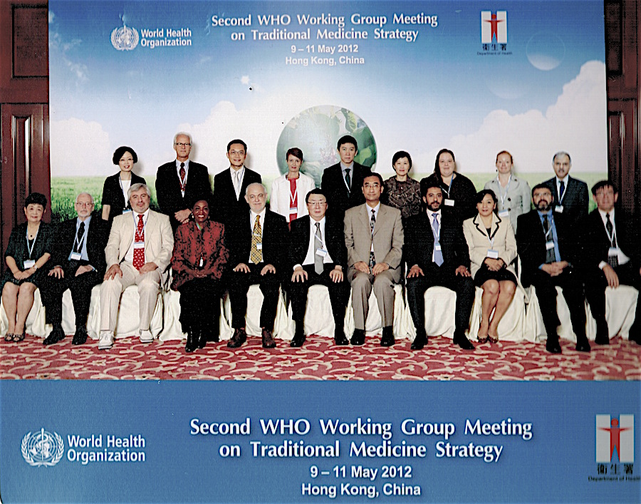Second WHO Working Group Meeting in Hong Kong, 2012